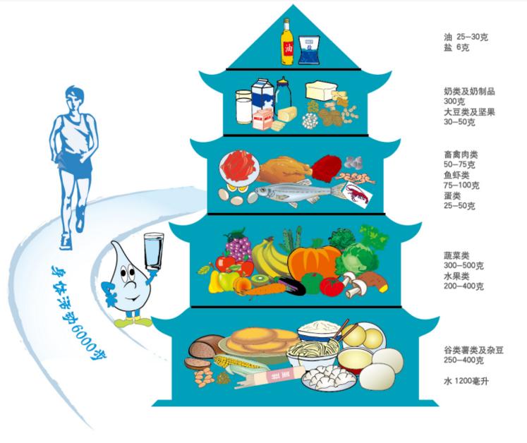 平衡膳食指南 中国居民平衡膳食宝塔图解
